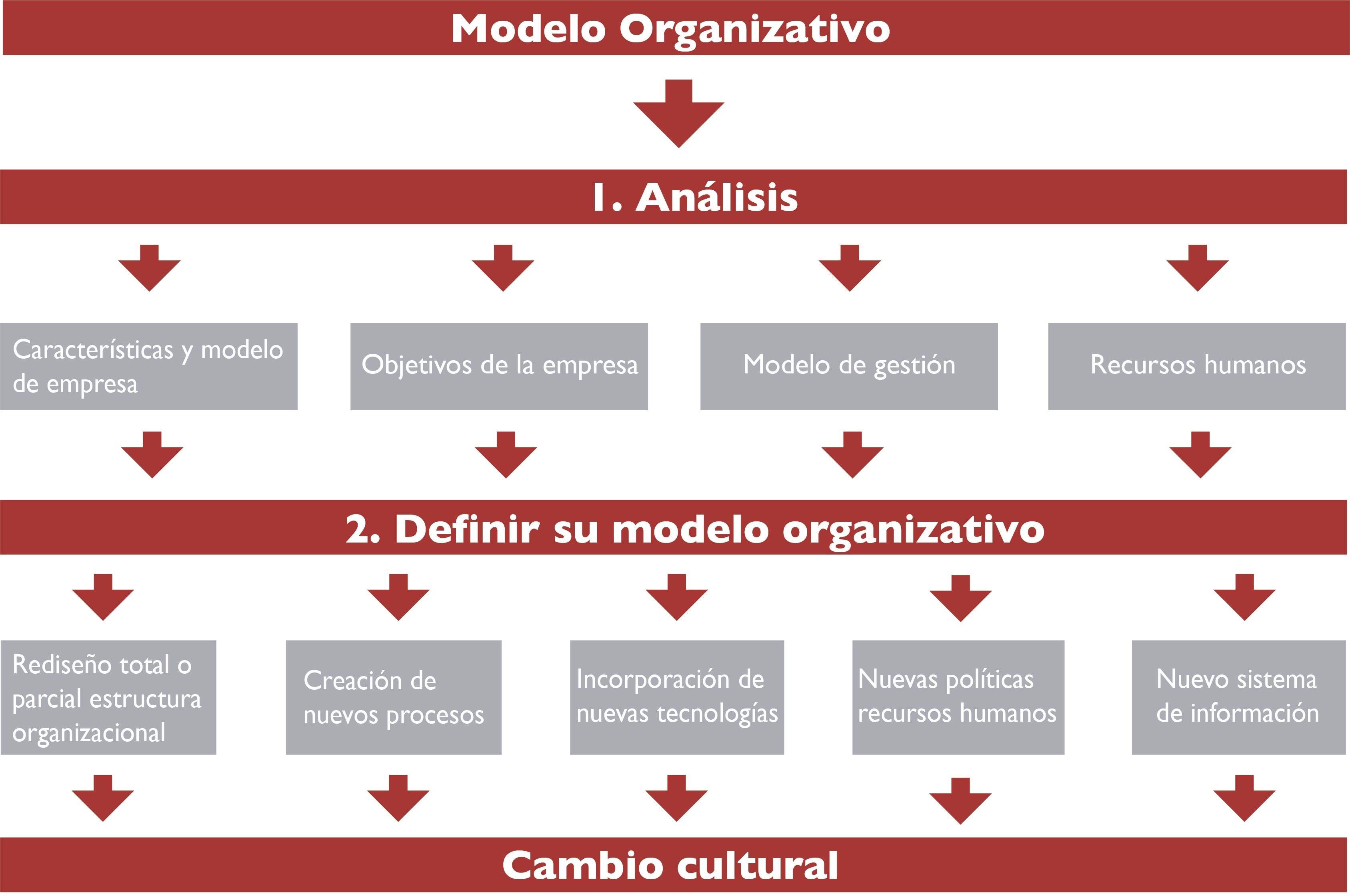 Fase 2 Modelo Organizativo